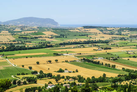 recanati: Marches (Italy), between Porto Recanati and Potenza Picena (Macerata) - Landscape with fields, hills and the sea, at summer