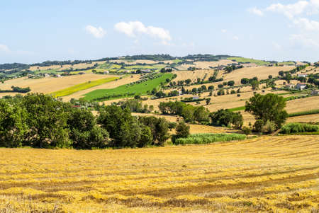 potenza: Marches (Italy) - Landscape between Potenza Picena and Montecosaro, near Macerata, at summer