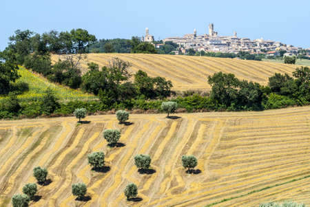 potenza: Potenza Picena (Macerata, Marches, Italy) - Panoramic view, with wheat fields and olive trees Stock Photo