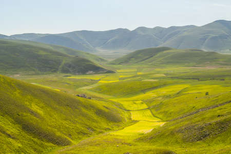 Piano di Castelluccio (Norcia, Perugia, Umbria, Italy) - Landscape at summer Stock Photo - 17999143