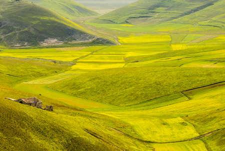 Piano di Castelluccio (Norcia, Perugia, Umbria, Italy) - Landscape at summer