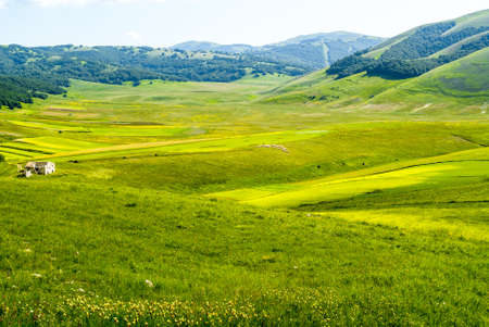 Castelluccio di Norcia (Perugia, Umbria, Italy) - Landscape in the Monti Sibillini Park at summer Stock Photo - 17999156