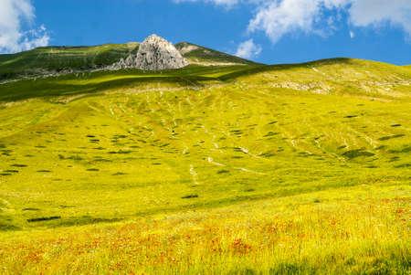 Castelluccio di Norcia (Perugia, Umbria, Italy) - Landscape in the Monti Sibillini Park at summer Stock Photo - 17999132