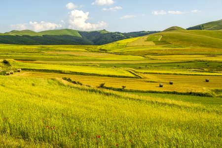 Castelluccio di Norcia (Perugia, Umbria, Italy) - Landscape in the Monti Sibillini Park at summer Stock Photo - 17999128