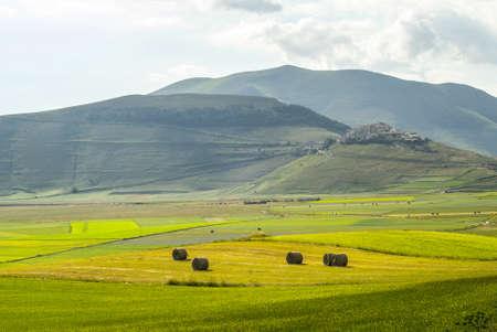 Castelluccio di Norcia (Perugia, Umbria, Italy) - Landscape in the Monti Sibillini Park at summer Stock Photo - 18058730