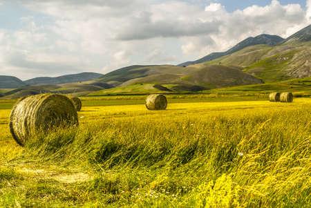 Castelluccio di Norcia (Perugia, Umbria, Italy) - Landscape in the Monti Sibillini Park at summer Stock Photo