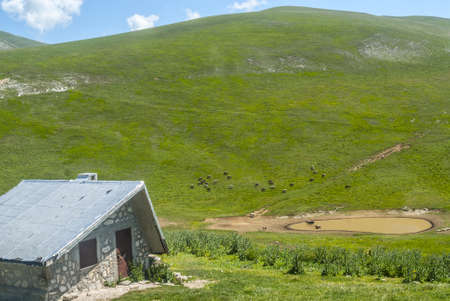 Campo Imperatore (LAquila, Abruzzi, Italy) - Landscape at summer in the Gran Sasso dItalia Natural Park photo