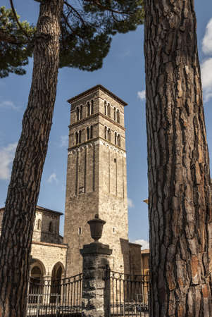 Rieti (Lazio, Italy) - Belfry of the Cathedral, in Romanesque style, and pines Stock Photo - 18413234
