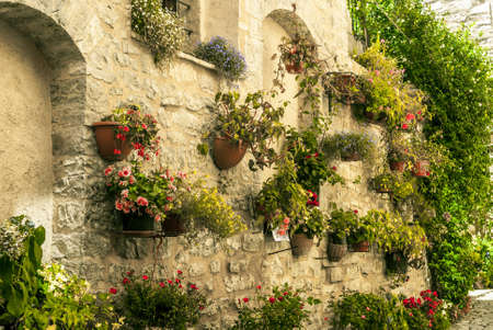 spello: Spello (Perugia, Umbria, Italy) - Potted plants and flowers hanged to an old house