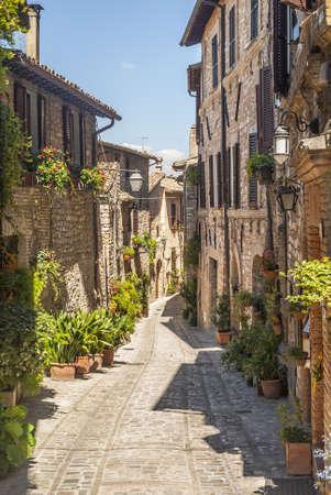 スペッロ (ペルージャ、ウンブリア州、イタリア) - 鉢植えな植物および花を持つ典型的な路地 写真素材