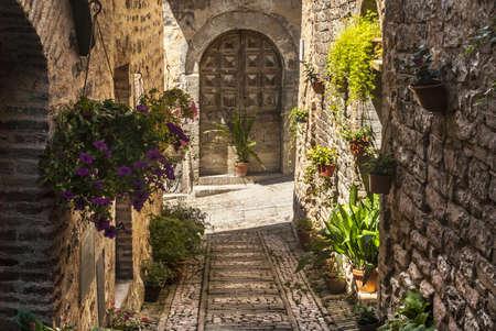 Spello (Perugia, Umbría, Italia) - Callejón típico con macetas y flores Foto de archivo - 18535775