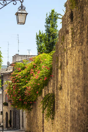 bevagna: Bevagna (Perugia, Umbria, Italy) - Old typical alley with plants Stock Photo