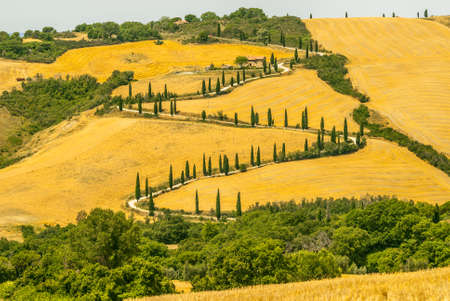 Landscape in Val dOrcia (Siena, Tuscany, Italy) at summer