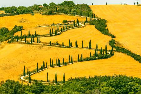 ヴァル ・ ドルチャ (シエナ、トスカーナ、イタリア) 夏の風景します。 写真素材