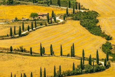castelluccio: Landscape in Val dOrcia (Siena, Tuscany, Italy) at summer