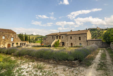 sant'antimo: SantAntimo (Siena, Tuscany, Italy) - Ancient country house with lavender in its garden Stock Photo