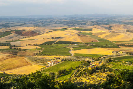 montalcino: Panoramic view from Montalcino (Siena, Tuscany, Italy) in a summer evening Stock Photo