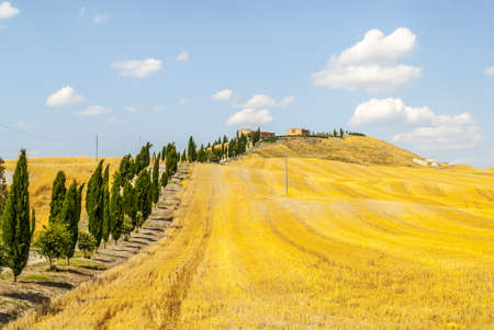 Crete senesi, characteristic landscape in Val d'Orcia (Siena, Tuscany, Italy). Typical farm Stock Photo - 19108525