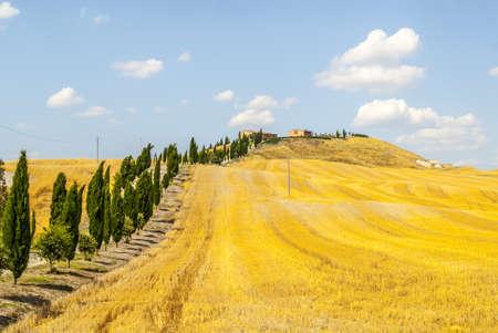 Crete senesi, characteristic landscape in Val d'Orcia (Siena, Tuscany, Italy). Typical farm Stock Photo - 19108525
