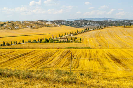 Crete senesi, characteristic landscape in Val d'Orcia (Siena, Tuscany, Italy). Typical farm photo