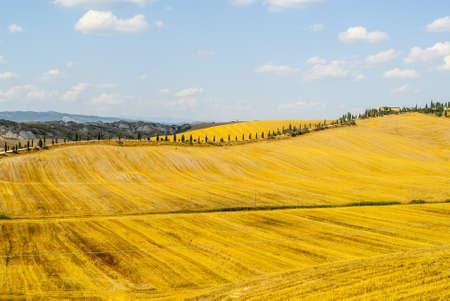 characteristic: Crete senesi, characteristic landscape in Val dOrcia (Siena, Tuscany, Italy). Typical farm Stock Photo