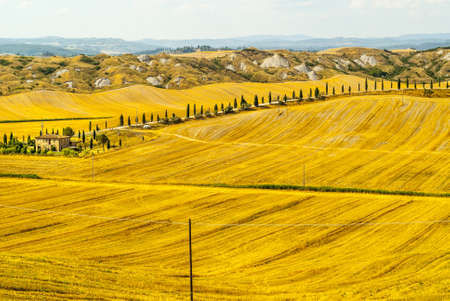 Crete senesi, characteristic landscape in Val d'Orcia (Siena, Tuscany, Italy). Typical farm Stock Photo - 19108735