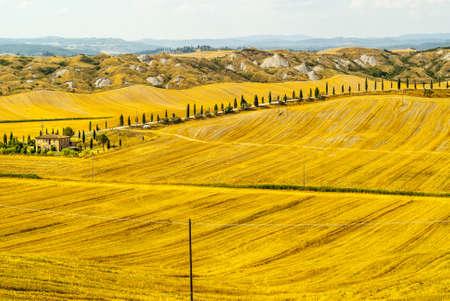 Crete senesi, characteristic landscape in Val d'Orcia (Siena, Tuscany, Italy). Typical farm Stock Photo - 19108735