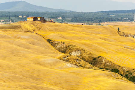 Crete senesi, characteristic landscape in Val d'Orcia (Siena, Tuscany, Italy) Stock Photo - 19108569