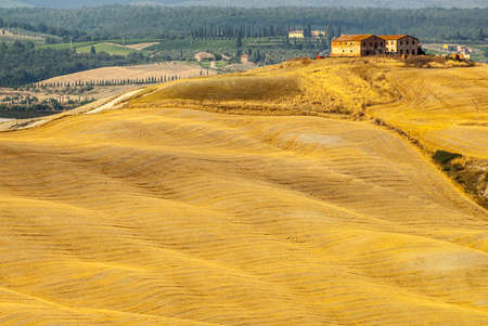 Crete senesi, characteristic landscape in Val d'Orcia (Siena, Tuscany, Italy) Stock Photo - 19108579