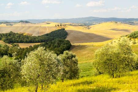 characteristic: Crete senesi, characteristic landscape in Val dOrcia (Siena, Tuscany, Italy)