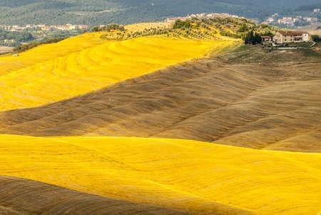 Crete senesi, characteristic landscape in Val d'Orcia (Siena, Tuscany, Italy). Typical farm Stock Photo - 19141388