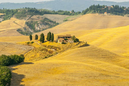 Crete senesi, characteristic landscape in Val d'Orcia (Siena, Tuscany, Italy). Typical farm Stock Photo - 19141399