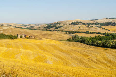 Crete senesi, characteristic landscape in Val d'Orcia (Siena, Tuscany, Italy) along the road from Asciano to Torre a Castello Stock Photo - 19141398