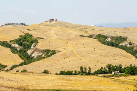 Crete senesi, characteristic landscape in Val d'Orcia (Siena, Tuscany, Italy) along the road from Asciano to Torre a Castello Stock Photo - 19160025