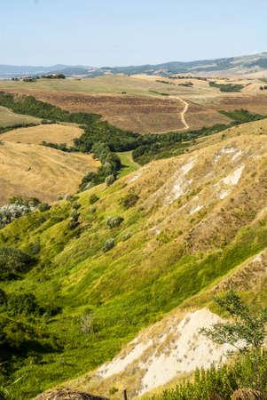 volterra: Landscape near Volterra (Pisa, Tuscany, Italy) at summer