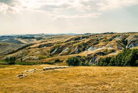 val d orcia: Crete senesi, characteristic landscape in Val d Orcia Stock Photo