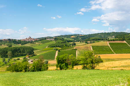 Country landscape of Monferrato (Asti, Piedmont, Italy) at summer, with vineyards photo