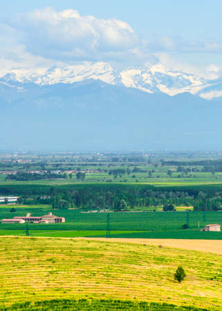 Country landscape of Monferrato (Asti, Piedmont, Italy) at summer, with vineyards and the Alps in background photo