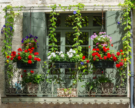 Uzes (Gard, Languedoc-Roussillon, France) - Old typical house with flowers and shop photo