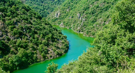 gorges: The valley of the Tarn river between Millau and Albi (Aveyron, Midi-Pyrenees, France) at summer Stock Photo