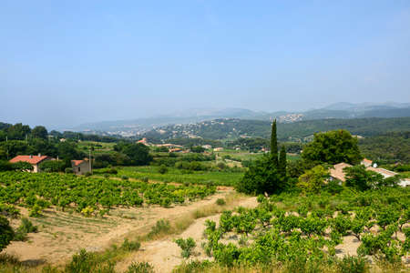Landscape in Provence near Marseille (Bouches-du-Rhone, Provence-Alpes-Cote dAzur, France) at summer photo