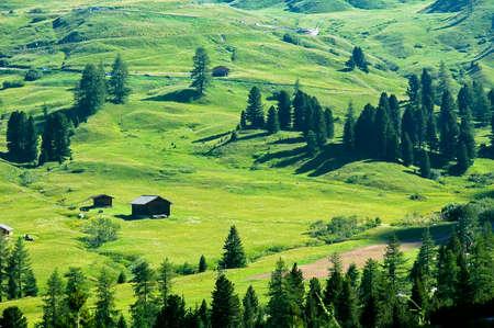 Passo Gardena (Dolomites, Belluno, Veneto, Italy), mountain landscape at summer