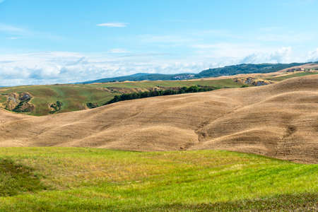 characteristic: Crete senesi, characteristic landscape in Val dOrcia (Siena, Tuscany, Italy), at summer.