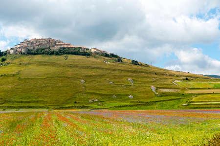 sibillini: Piano Grande di Castelluccio (Perugia, Umbria, Italy), famous plateau in the natural park of Monti Sibillini. The old village