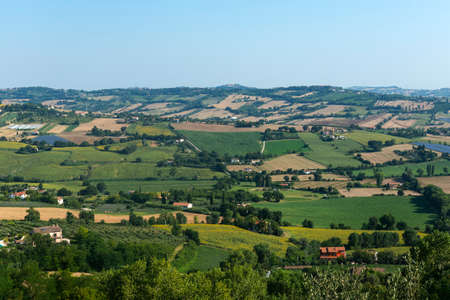 recanati: Country landscape from Osimo (Ancona, Marches, italy) at summer