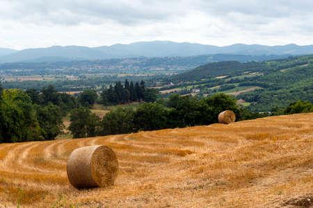Along the road of Passo di Viamaggio, in the Appennino Tosco-Emiliano (Tuscany - Emilia Romagna): mountain landscape at summer