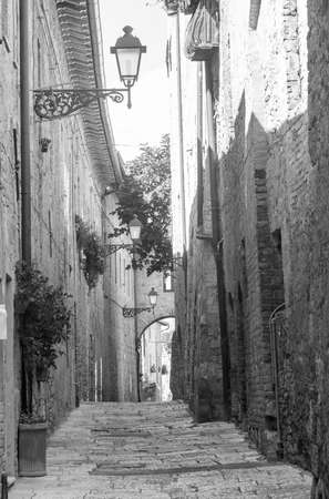 black and white flowers: Colle di Val dElsa (Siena, Tuscany, Italy), historic city. Old houses with potted plants and flowers. Black and white. Stock Photo