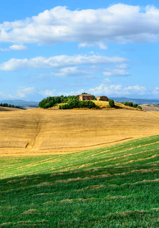 Crete senesi, characteristic landscape in Val dOrcia (Siena, Tuscany, Italy), at summer. photo