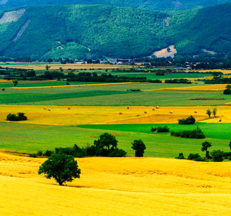 sibillini: View on the plain of Norcia from the road to Forca Canapine (Perugia, Umbria, Italy), in the park of Monti Sibillini, at summer Stock Photo