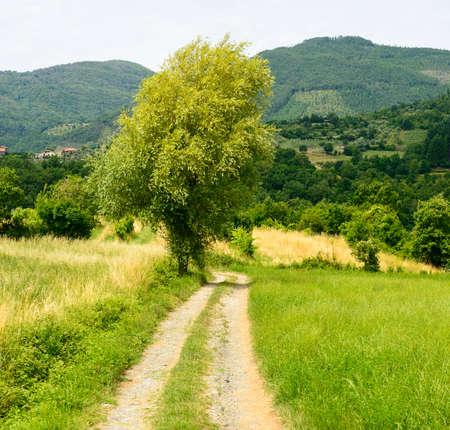 massa: Regnano (Massa e Carrara, Tuscany, Italy), old village in Lunigiana and surrounding country. Path.